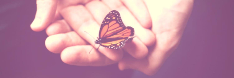 20170816 - A sabedoria da transformação - Post Site